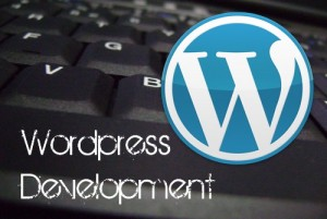 wordpress_dev2